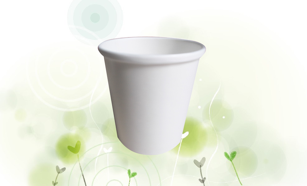 480ml soup cup